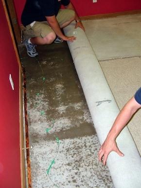 flood restortation adelaide
