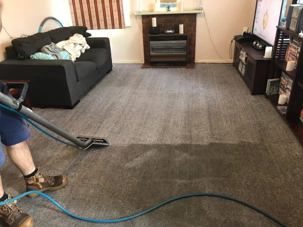 Carpet cleaning eastern suburbs loungeroom