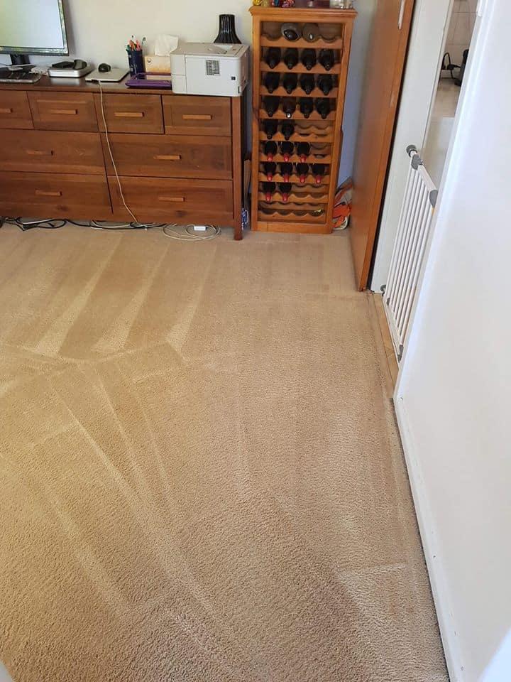 Carpet cleaning eastern suburbs faimly room