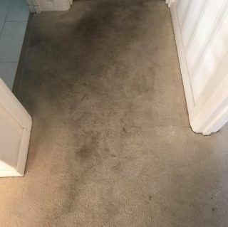 cream carpet before being cleaned